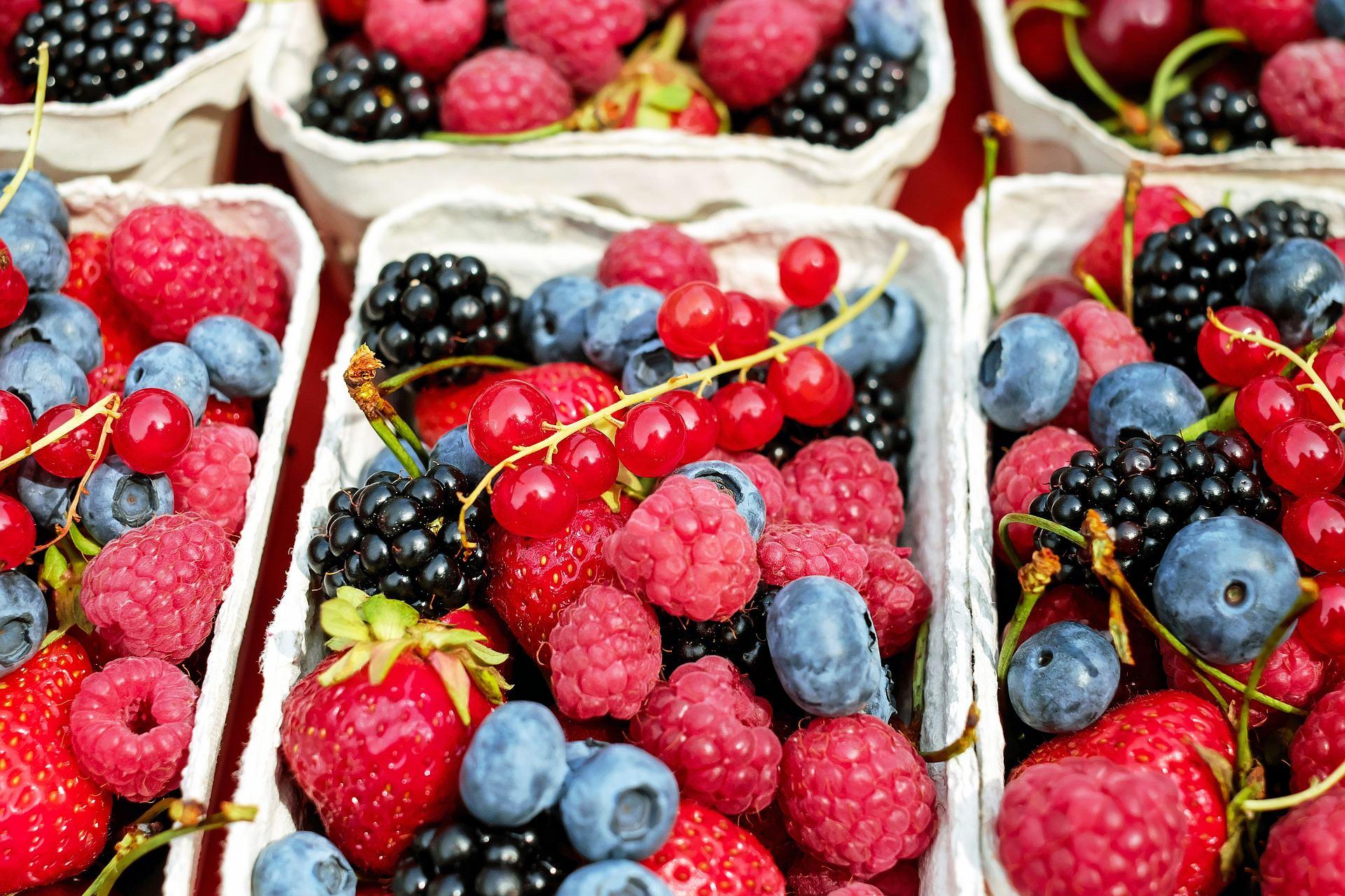 berries-1546125_1920-1.jpg