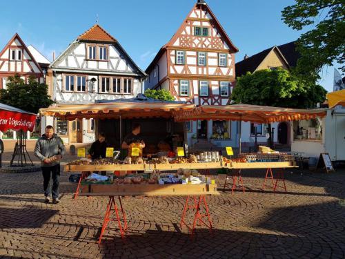 Marktplatz-Seligenstadt