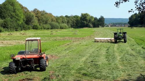 Wiesen Mäharbeiten im Naturschutzgebiet