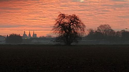 Sonnenuntergang über Seligenstadt und Hof