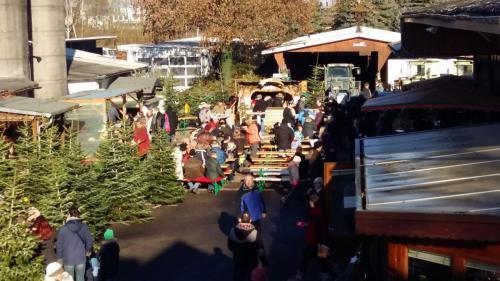 Weihnachtsfest und Weihnachtsbaumverkauf auf dem Eichwaldhof